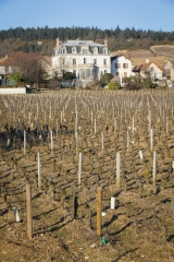Chateau de Mercurey across the vineyards