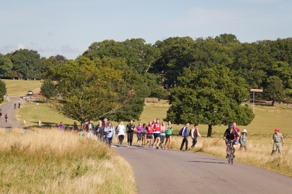 Herds of joggers also congregate in Richmond Park. Flocks of cyclists are also a danger to watch out for.